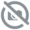 CABLE POMPE FORAGE ET ZONE HUMIDE